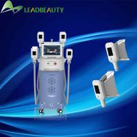 China Hot Sale In Overseas ! -15-5℃ Cryolipolysis Weight Reduction Beauty Machine From China on sale
