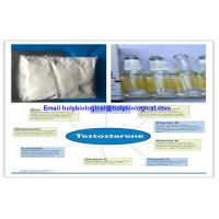 Buy cheap Raw Material Testosterone Steroid Hormone Prop Testosterone Propionate for Muscle Gain product