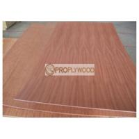 China Sapele Face Poplar Core Plywood for Forniture and Construction/2mm-30mm/few splinter after cutting on sale