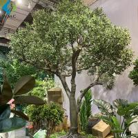 Buy cheap Fiberglass Trunk Artificial Olive Tree Large Size For Outdoor Landscape Decoration product