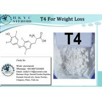 Buy cheap T4 Fat Burning Steroids Powder Levothyroxine Sodium T4 For Weight Loss from wholesalers