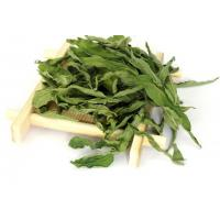 Buy cheap SABAH SNAKE GRASS, SSG leaves,Clinacanthus Nutans,cancer therapy,healthy tea product
