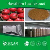 Buy cheap Chinese herb extract Hawthorn Leaf Extract product
