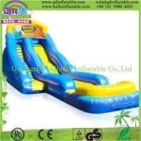 Popular inflatable slide inflatable water slide,giant inflatable water slide for adult
