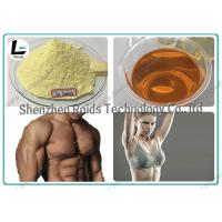 Buy cheap Injectable Anabolic Steroids CAS 10161-33-8 , Trenbolone Enanthate 100 For Muscle Gain product
