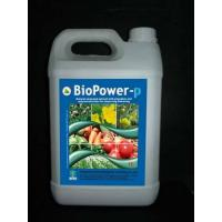 BioPower-P Seaweed Extract,Biological Fertilizer