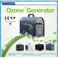 Professional Household Ultrapure Ozone Generator , car ozone machine / equipment