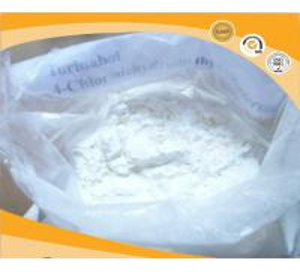 China CAS 2446-23-3 Testosterone Anabolic Steroid Powder Oral Turinabol 4 - Chlorodehydromethyl wholesale