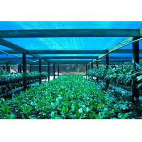 Buy cheap Greenhouse Shade Net ,Agricultural Shade Cloth For Flower Farm product