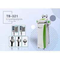 China 2 Heads Cryo lipolysis Fat Freezing Cool Sculpting Fat Reduction Body Contouring Fat Frozen wholesale