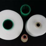 ジーンズの陶磁器の未加工白40/2ポリエステル縫う糸の製造者