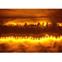 China 30mm Single Color LED Chain LED Pixel Module For Outdoor LED Signboard wholesale