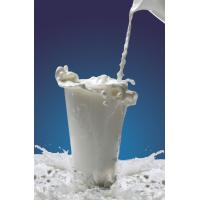 Buy cheap White Food Grade Casein Phosphopeptide For Non-Dairy Beverage product