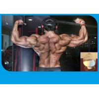 Buy cheap Anabolic Trenbolone Steroid White Powder Trenbolone Acetate10161-34-9 For Bodybuilding product