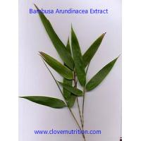 Quality Bambusa Arundinacea Extract Yellow Brown Fine Powder with ISO factory for sale
