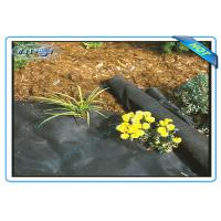 Buy cheap Anti UV Non Woven PP Ground Cover / Weed Control Fabric / Landscape Fabric product