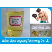 China Raw Hormone Testosterone Anabolic Steroid for Men Muscle Building , CAS 58-20-8 wholesale