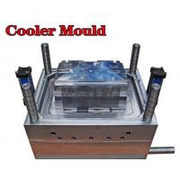 Quality High quality Plastic injection Auto cooler mould for auto parts/OEM mould in for sale