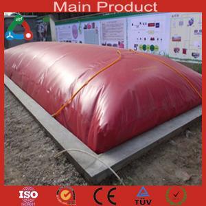 2014 Newest High Quality Biogas Equipment