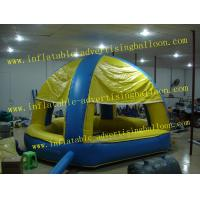 Reuseable 5ft Blueberry Fruit Shaped Balloons For Advertising , Inflatable