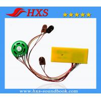 China Recording Sound Chip China Export Sound Chip For Educational Toy on sale
