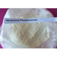 Buy cheap 99% Healthy Bodybuilding Nandrolone Phenylpropionate Steroid Cas 62-90-8 , White Durabolin Powder product