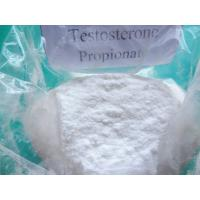 Buy cheap Primary male sex hormone Testosterone Propionate product