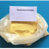 Buy cheap CAS 10161-33-8 Trenbolone Steroids , Injectable Parabolan Trenbolone Enanthate for Bodybuilding from wholesalers