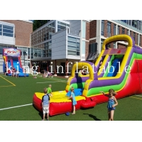 China Customized Size Backyard Rainbow Theme Outdoor PVC Water Slide With Pool For Kids Adults Playing on sale
