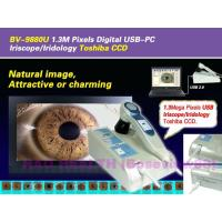 China 2M Pixels Digital USB-PC Iriscope/Iridology Toshiba CCD wholesale