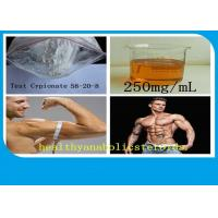 Buy cheap Safe Pharmaceutical CAS 58-20-8 Raw Testosterone Powder Steroids Testosterone cypionate product