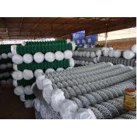 China protection mesh fence for playground,garden,zoo,building on sale