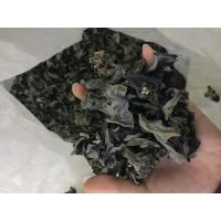 Buy cheap Factory Price Dried Black Fungus to Europe (Size:2.5CM above) product
