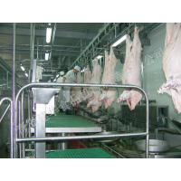 Carcass Processing Conveying Line