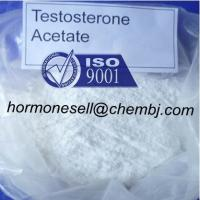 China GMP standard Hormone steroid Testosterone Acetate for muscle growth powder wholesale