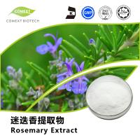 Quality Factory Price Rosemary Leaf Extract Ursolic Acid 25%~98% HPLC for sale