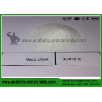 Buy cheap Androstalone CAS 521-11-9 Anabolic Steroid Hormones Mestanolone for Lean Muscle Mass product