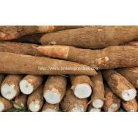 Buy cheap Automatic Cassava Flour Production Line for Sale product