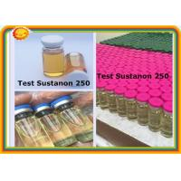 Buy cheap Test Sustanon 250 Injectable Anabolic Steroids Raw Steroid Testosterone Sustanon 250 product