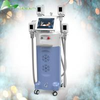 China Safe Cryolipolysis Fat Freeze Slimming Machine , 12 Inch Screen Body Slimming Equipment wholesale