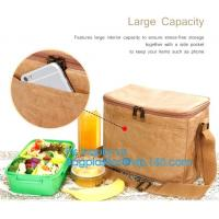 Buy cheap Custom Eco friendly tyvek Lunch bag Insulated Cooler bag,tyvek kraft paper insulated aluminum foil lunch box bag with sn product