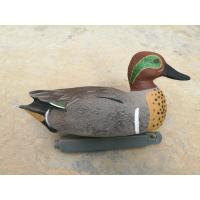 China Pro series Green Winged Teal Duck Decoy Floatie for hunting from China duck decoy factory 12pk on sale