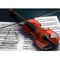 Buy cheap Violin / Guitar / Cello Humidity Stabilizer No Water No Drips No Mess product