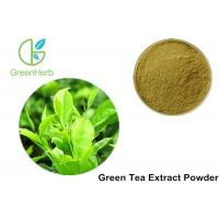 Buy cheap 100% Pure Green Tea Extract Powder Anti - Bacteria For Cosmetics / Food product