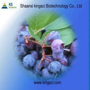 Serie del extracto de Billberry del suplemento de la nutrición