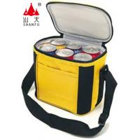 Outdoor Speaker Cooler Bag FM Radio Support TF Card Play BW-101