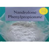 Buy cheap White Nandrolone Steroid Nandrolone Phenylpropionate / NPP / Durabolin Half Life For Fat Loss product