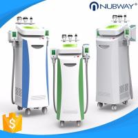 China 2018 Most Popular Smart Freezing Cryolipolysis Machine for Weight Loss/Plastic Surgery on sale