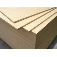 Quality Vietnam Made White Birch Plywood , 1220*2440mm, Acacia/Hardwood Core, for sale