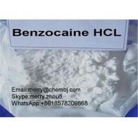 China Benzocaine HCL Local Anethtic Raw Powder Benzocaine Hydrochloride For Pain Killer 23239-88-5 wholesale